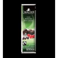 Baton z owocami leśnymi z czekolady deserowej słodzony ekstraktem ze stewii, bez cukru, 40g